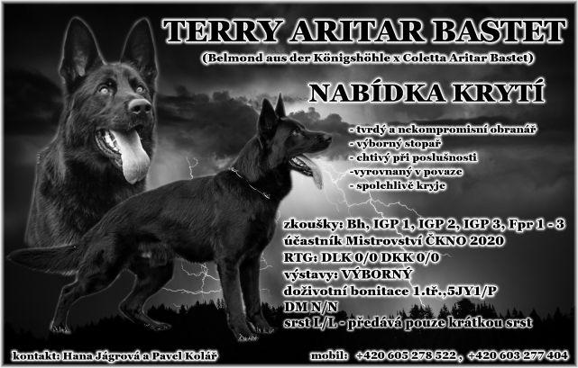 b_641_409_16777215_00_images_Terry_Aritar_Bastet_Terry_012021.jpg