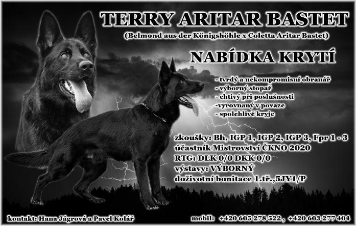 Terry 063735881